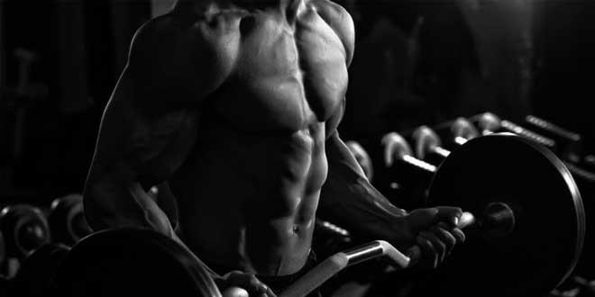 Benefici per i body builder