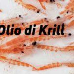 Olio di Krill