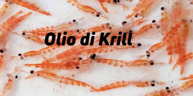 Olio di Krill – Proprietà e Benefici