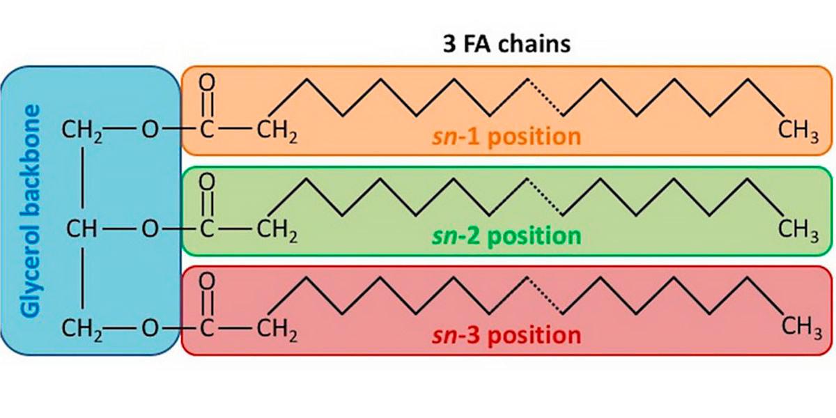 Struttura chimica