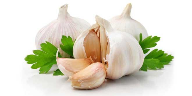 L'aglio e le sue proprietà