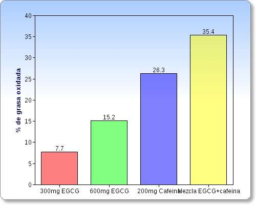 Grafico dello studio brucia grassi