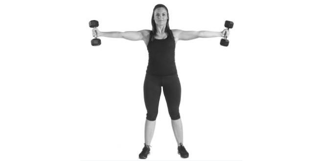 Ferro e allenamento