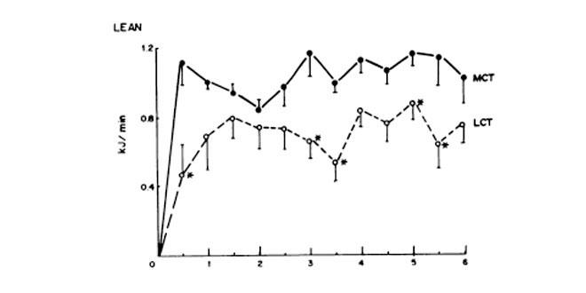 Grafico magro
