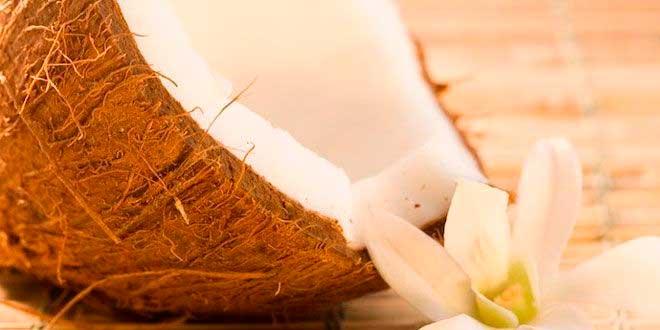 Olio di Cocco: Proprietà e Benefici, Come Prenderlo e Usi
