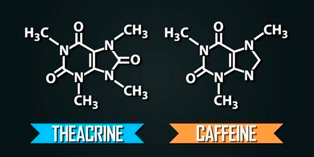 Caffeina VS Teacrina