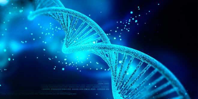 Proteine Totali: Scopri cosa sono