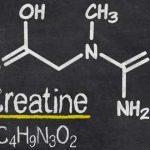 Come assumere la creatina
