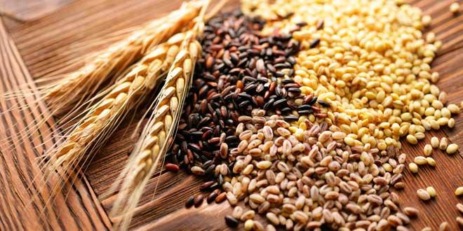 Quali cereali nelle diete senza glutine
