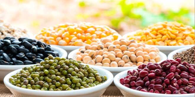 Legumi come fonte di proteine nelle diete vegane
