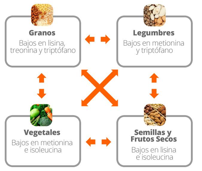 Combinare Proteine Vegane