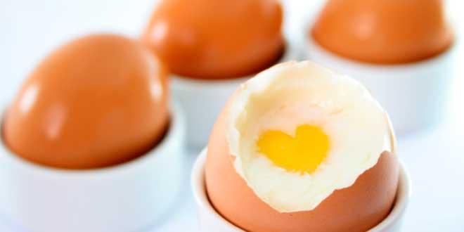 Rapporto tra uova e colesterolo