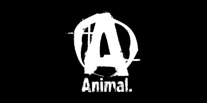 Quali sono e come assumere i pack della linea Animal?