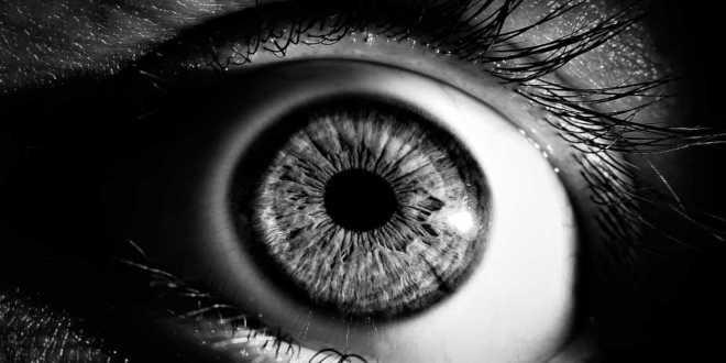 Astaxantina e salute della vista