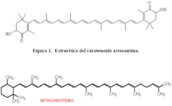 Struttura chimica dell'astaxantina