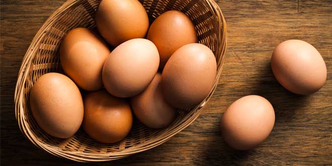 Proteine delle uova