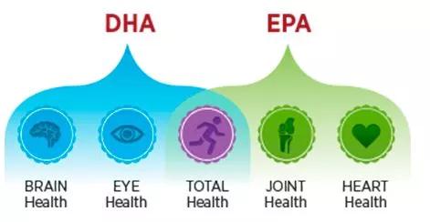 Funzioni dell'EPA e del DHA sulla nostra salute
