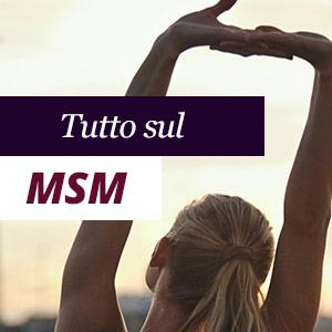 Tutto sul MSM