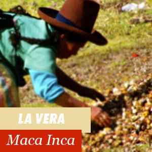 La vera maca Inca