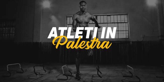 Guida HSN: Sportivi in Palestra. Parte 1