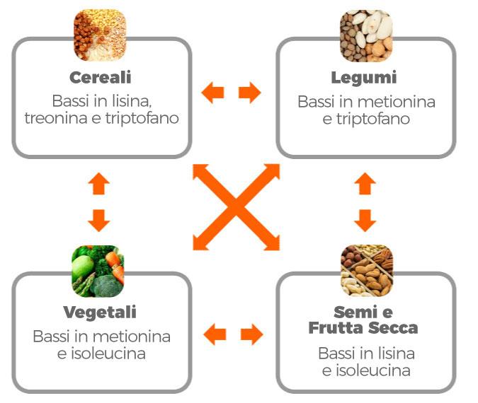Fonti di aminoacidi per i vegani