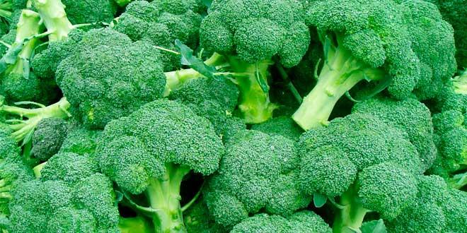 Contenuto di vitamina C nei broccoli