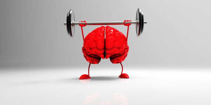 Effetti del coenzima Q10 sul cervello