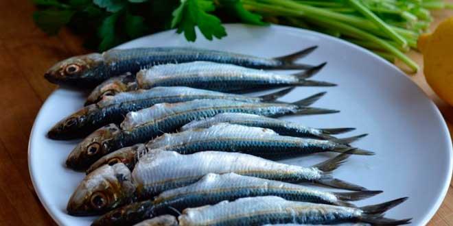 Calcio da pesce azzurro