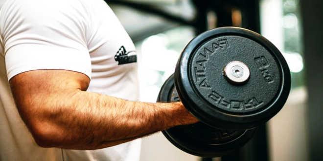 Proteina con ottimo profilo di aminoacidi per il miglior recupero muscolare