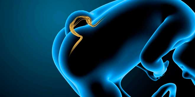 Difetti congeniti causati dalla carenza di acido folico