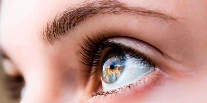 Dente di leone per la salute della vista