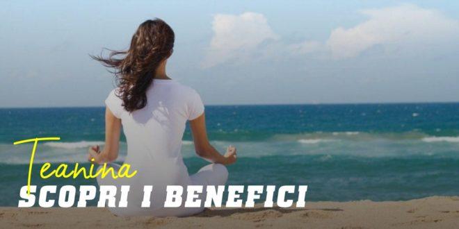 Teanina – Scopri l'aminoacido per combattere lo stress
