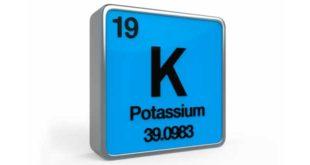 Quali funzioni svolge il potassio nel nostro organismo?