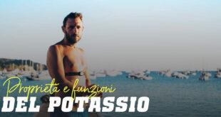 Propiertà e funzioni del potassio