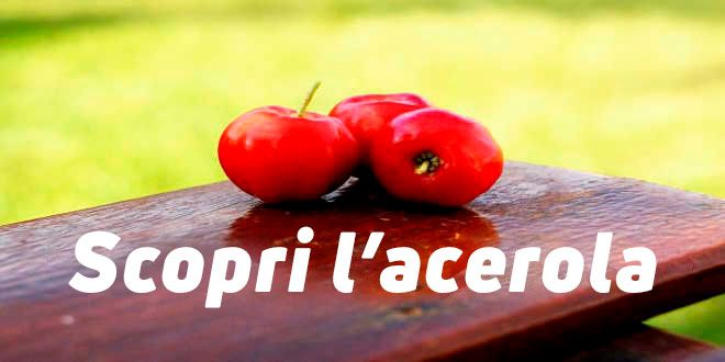 Acerola, la bacca ricca di vitamina C