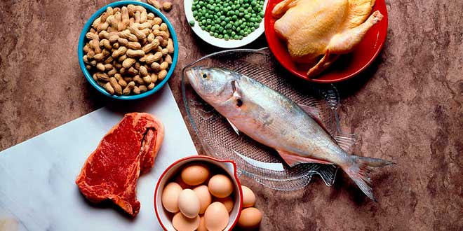 fonti proteine