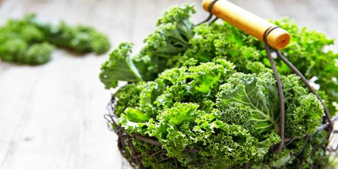 raccolta kale ingrediente
