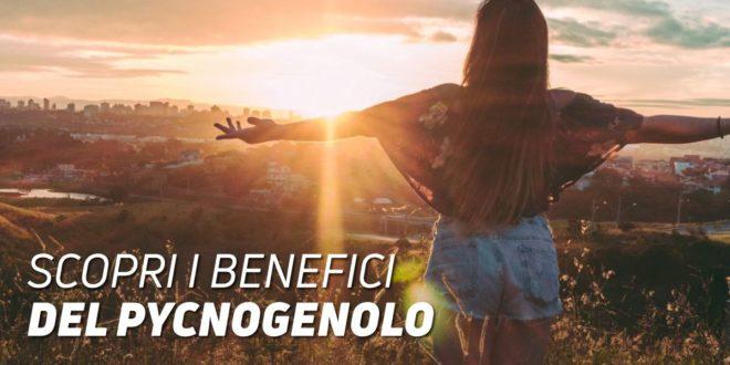 Benefici del Picnogenolo per la salute