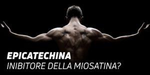 Epicatechina