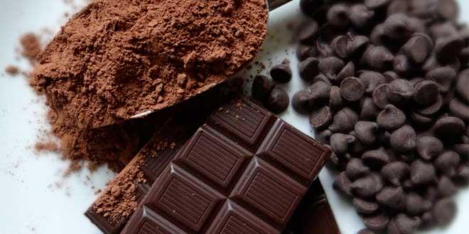 cacao epicatechina