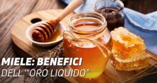 Miele benefici oro liquido