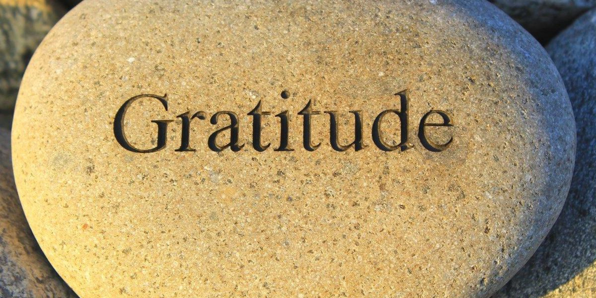 gratificazione