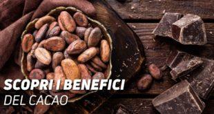 Benenfici del cacao
