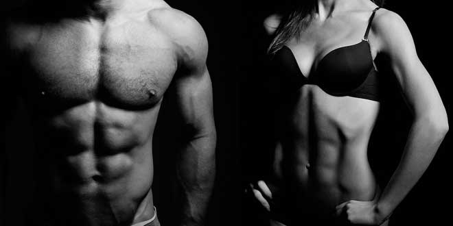 proteine muscoli