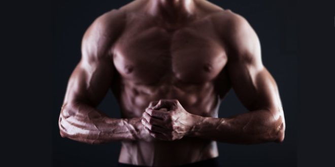 Acido arachidonico – Maggiore Massa Muscolare e Forza?