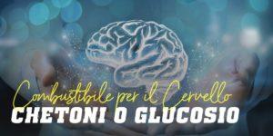 Chetoni o glucosio combustibile per il cervello