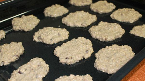 Ricetta biscotti avena 1