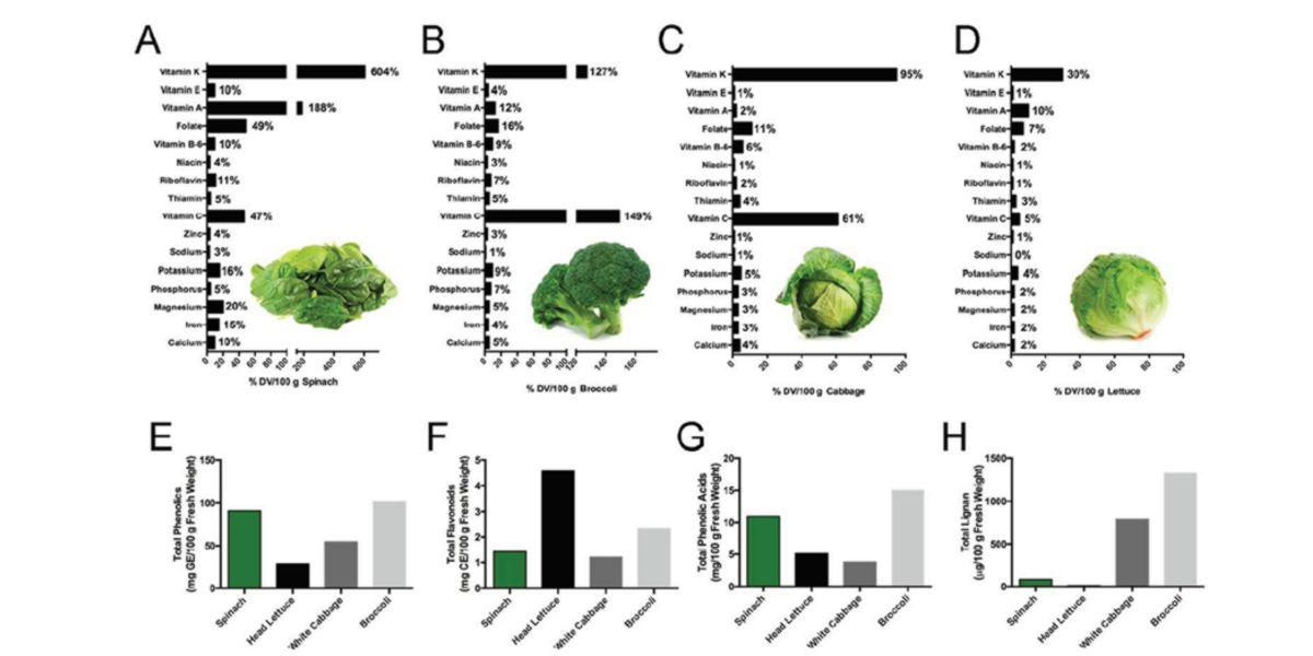Contenuto di Vitamine e Minerali negli Spinaci
