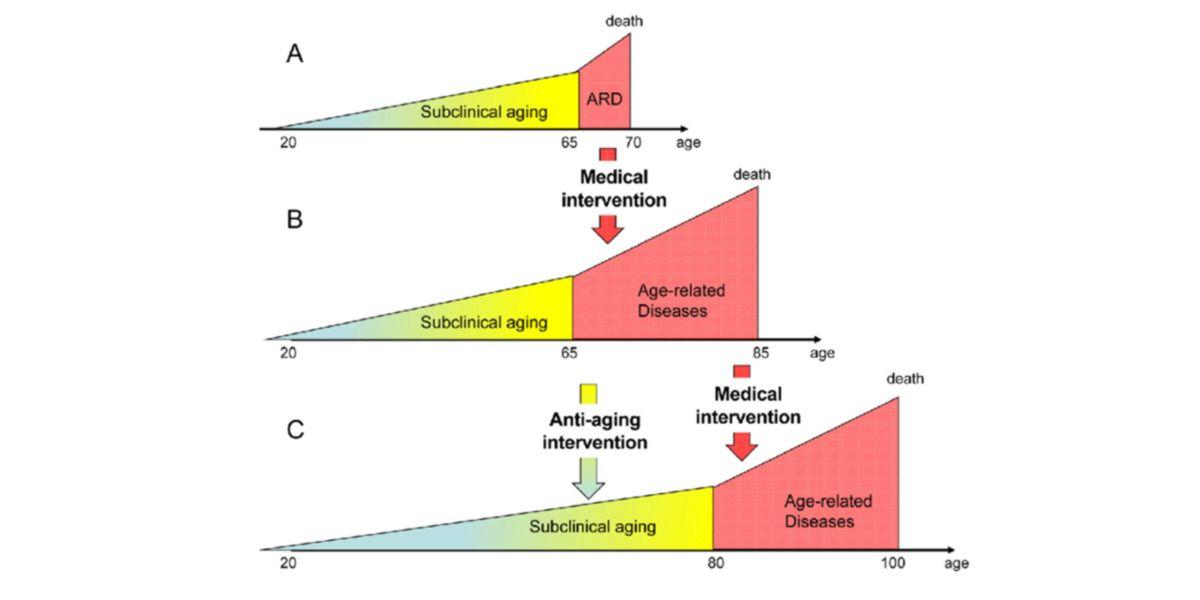 Rappresentazione invecchiamento e longevità