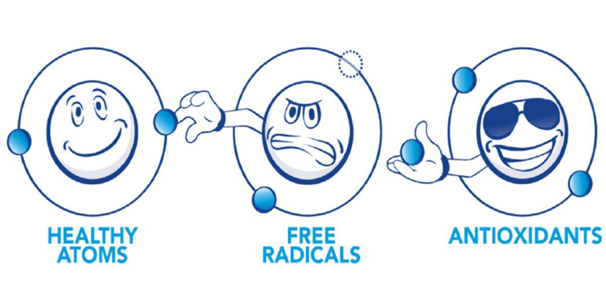 Rappresentazione Antiossidanti